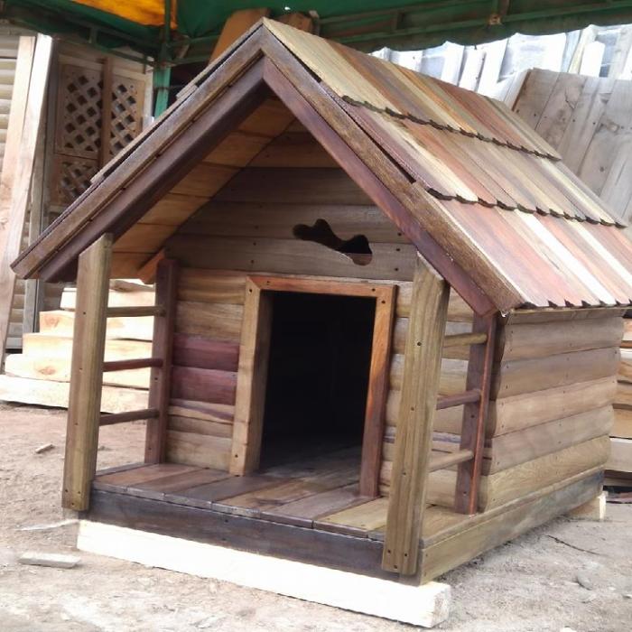 casa de perro 2